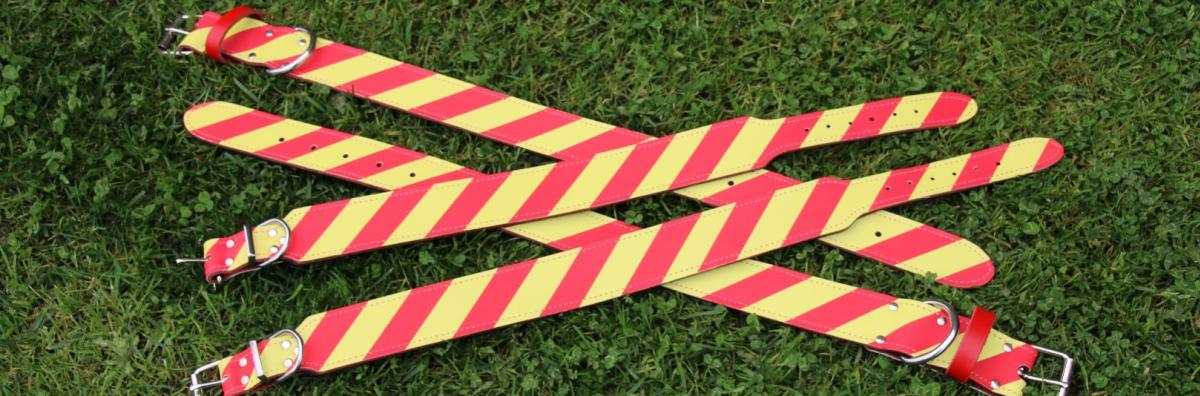 A photo of four red and yellow dangerous dog collars laid out on a grass lawn