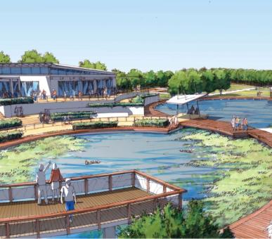 Botanic Gardens Masterplan Proposed Ornamental Ponds and Visitor Centre