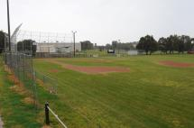 Albert Roy Recreation Reserve